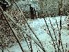 zima-Ashmarin-22.jpg